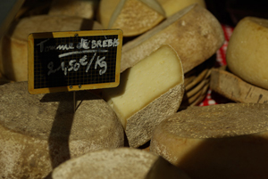 Ewe's milk cheese © Multim�dia & Tourisme