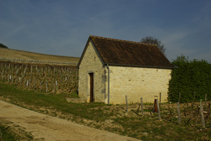 Shelter in the Chablis vineyards © Multim�dia & Tourisme